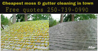 Cheapest moss/gutter cleaning in town free quotes 250-739-0990