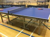 Professional table tennis table - Butterfly