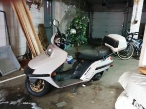 SCOOTER  Honda  CH250  Elite 250  for sale