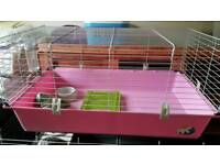 Guinea-pig cage and accessories