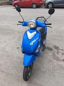 Gio scooter électrique 50 km/ hour