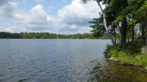 Pike lake, 933 ft waterfront lot, 42 acres, treed lot