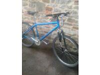 Adults Raleigh mountain bike