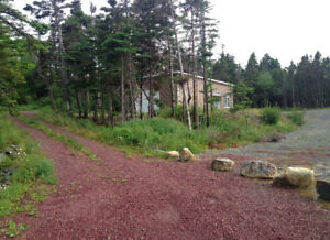 Cabin on 4 Acres