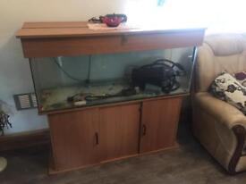 4ft Fish Tank / aquarium with all accessories