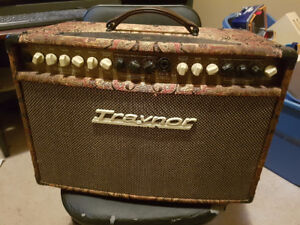 Traynor Acoustic Master Standard Guitar Amplifier