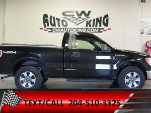 2010 Ford F-150 XLT / LOW Kms / Reg.Cab 4x4 / Financing