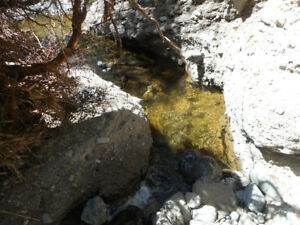 Placer gold claim on Cannell Creek by Kamloops