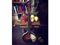 Danelectro baby sitar (guitar)