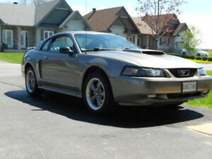 NEW PRICE Low Mileage Mustang GT