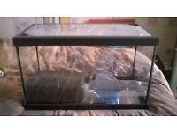 Aquaria Start Up Fish Tank