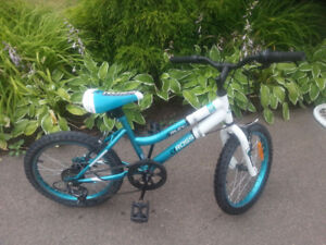 "Kids 18"" tires Mountain Bike"