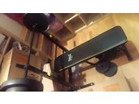 Everlast gym equipment weights set and bench