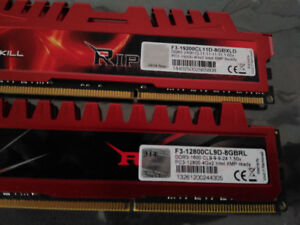 G. Skill Ripjaws 1600MHz and 2400MHz DDR3 Memory