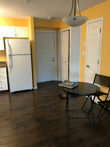 High End 2 Bedroom Condo for Rent