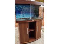 JUWEL VISION 180 LITRE BOW FRONT FISH TANK & CABINET IN DARK OAK & FILTER LIGHT DELIVERY 07544000786