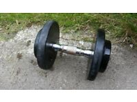1 dumbell weights 10kg