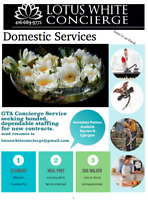Looking for Domestic Services