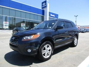 2010 Hyundai SANTA FE Limited w/Navi sunroof backup camera leath