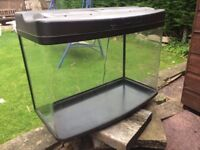 Standard Fish Tank! Mint Condition with Built in Light!