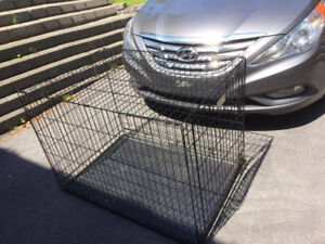 Large Breed Dog Cage