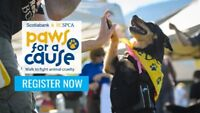 BC SPCA Surrey Paws for a Cause