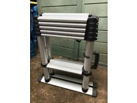 TELESTEPS 60417 extendable step ladders