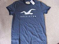 Mens Hollister Logo T Shirt in Blue - Size Small (NEW)