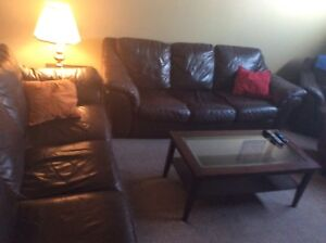 Living Area Set: Two Full Size Leather Couches + more