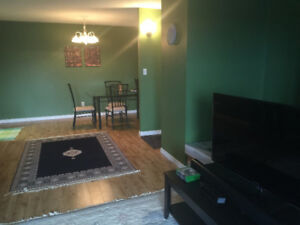 Furnished one bedroom condo for rent close to U of M July&Aug
