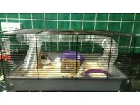 Hamster and gerbil cages for sale £20 each with other cage bits