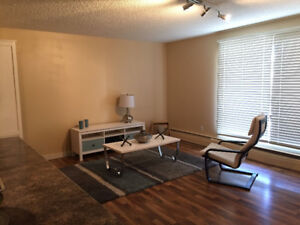 Downtown Oliver 1 Bedroom - Heated Parking, Insuite Laundry