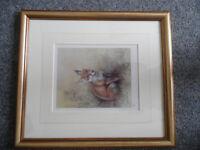 John Naylor Wildlife Artist Framed Prints