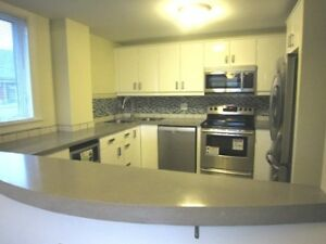 13-134 Renovatated South End Condo Great location!