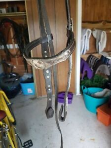 """16"""" western saddle, chest plate and bridle for sale"""
