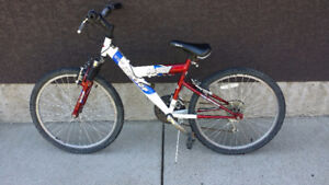 20 In. Mountain Bike