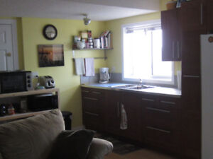 Bright, Clean Walk-out Suite for rent in Cochrane