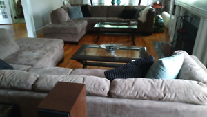 L shaped couches