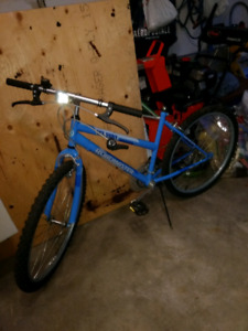 Bike - needs some work
