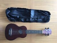 Ukulele and Guitar Course