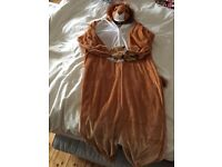 Child's Lion fancy dress outfit