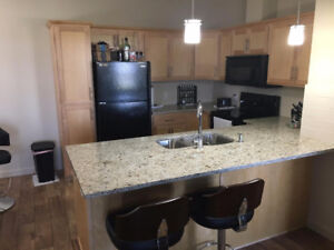 Gorgeous fully upgraded Windermere Condo for sale