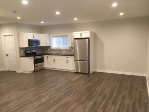 Brand new bright basement suite in Taber