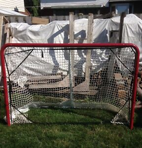 Professional hockey net