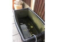 Koi holding tub