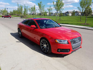 2011 Audi A5 Premium Plus Coupe - Low Km! - AWD!