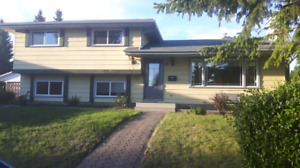 Room for rent in Dalhousie Aug 1st