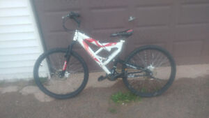 18 speed ross velocity bike