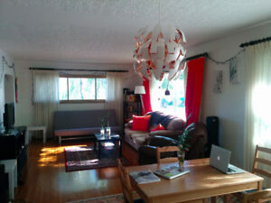 Main floor, grad student or professional roommate wanted!