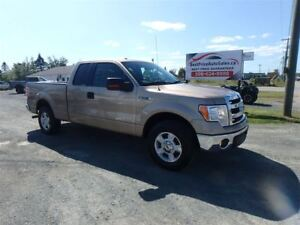 2014 Ford F-150 ECOBOOST! CERTIFIED!